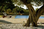 Luxury villas in Greece - Xenon Estate extra large swimming pool 17m x 9m